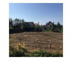 Czyszczenie działek, Karczowanie terenu, rekultywacja gruntów, likwidacja sadów